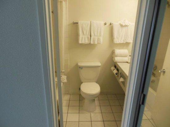 Anaheim Plaza Hotel and Suites: Bathroom