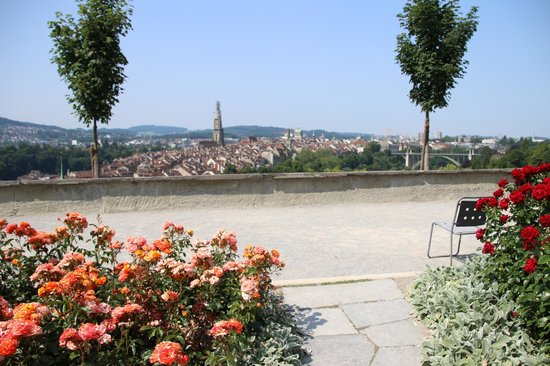 Old Town Bern: バラ園