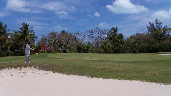 Treasure Cay Beach, Marina & Golf Resort: greens can vary in speed