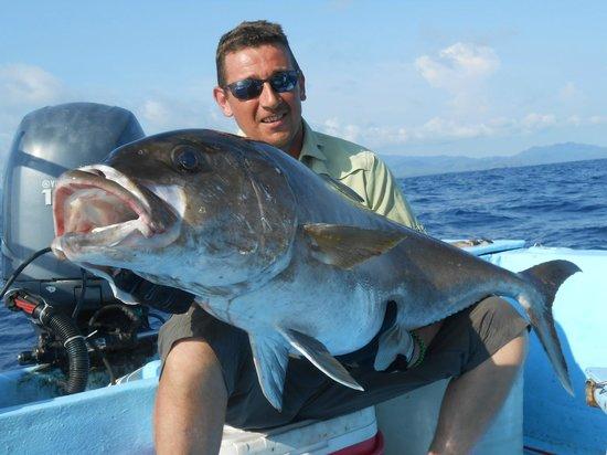 Buena Vista Sportfishing: seriole