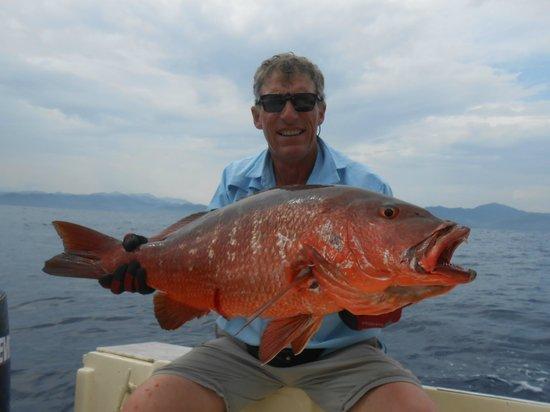Buena Vista Sportfishing: red snaper