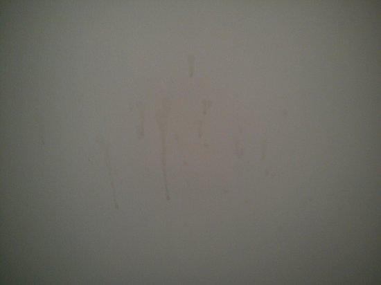 Castle Dargan: tea/coffee stains on bedroom wall