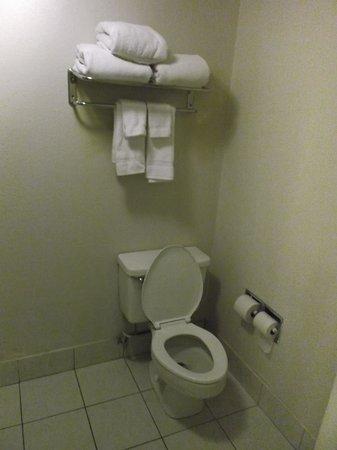 Quality Inn: WC chambre 123.