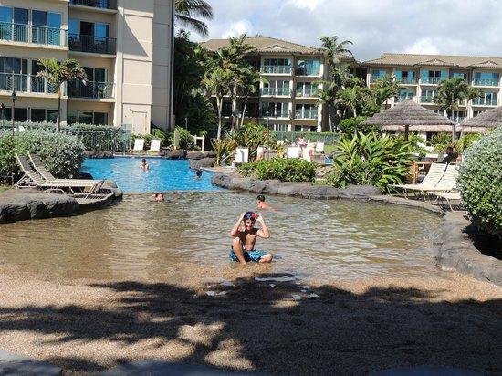 Waipouli Beach Resort : Pool at the resort