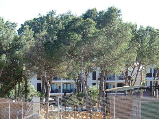 Protur Floriana Resort: Zimmeraussicht