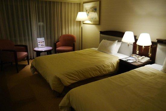 Hotel Nikko Kansai Airport: Room view