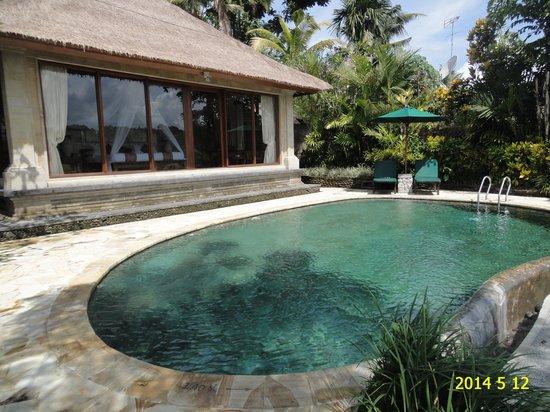 The Royal Pita Maha: Villa pool