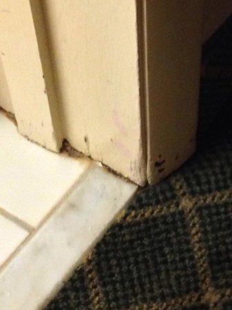Grand Forks Inn & Suites: Edges of flooring
