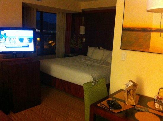 Residence Inn San Diego North/San Marcos: ver nice room