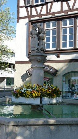 Schwaetzweiber