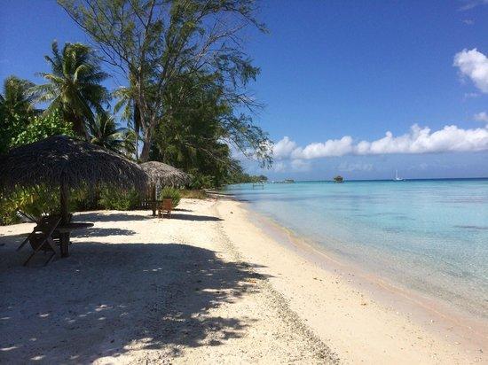 Pearl Havaiki: Beach at Havaiki