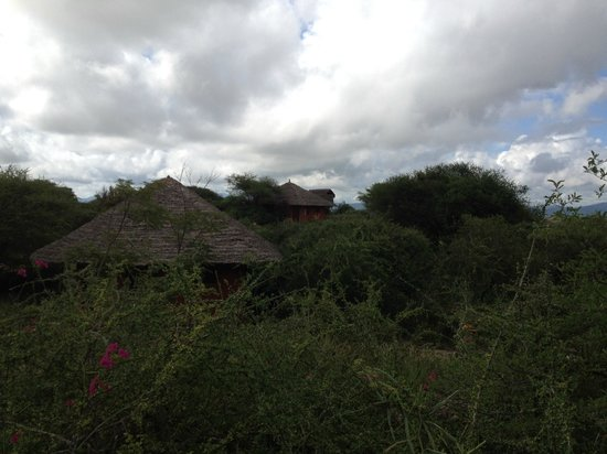 Kia Lodge – Kilimanjaro Airport: Bungalous