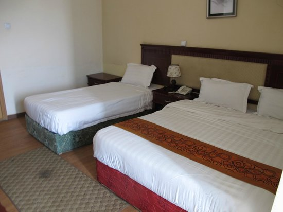 Haikan Hotel: Beds and stinky carpet
