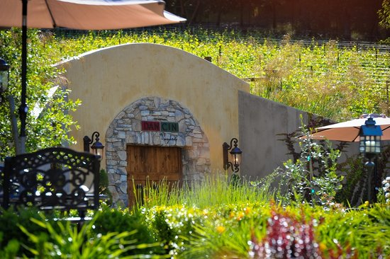 DANCIN Vineyards : Cave