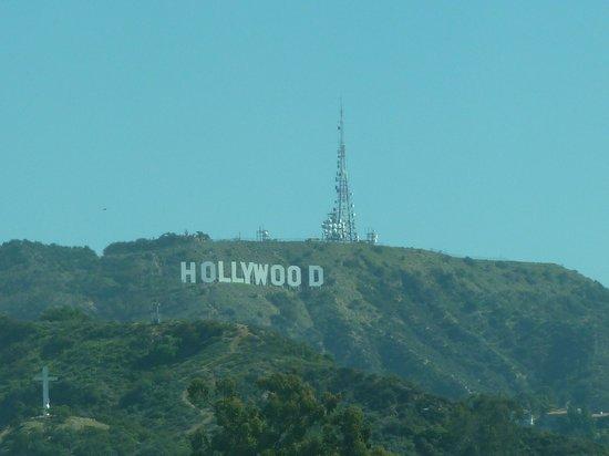 Loews Hollywood Hotel : Вид из окна