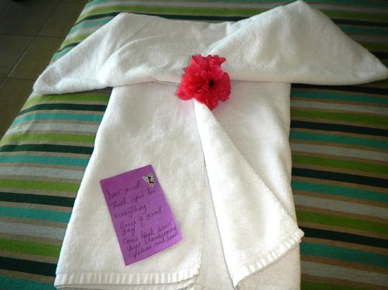 Hotel Playa Cayo Santa Maria : to our chamber maids thankyou so much for everything specially the everyday towel art you made