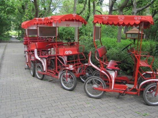 Margaret Island (Margitsziget): Ενοικιαζόμενα ποδήλατα