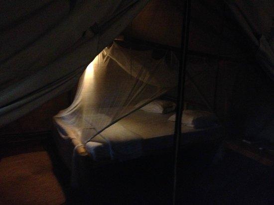 Migunga Tented Camp: Habitación