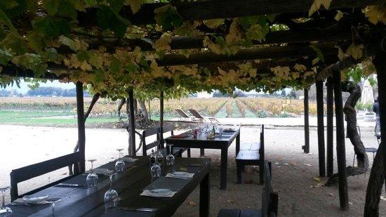 Rayuela Wine & Grill at Vina Viu Manent: Afuera