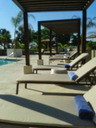 Sheraton Santo Domingo : Pool