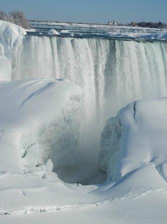Niagara Falls : Portion of Horseshoe Falls