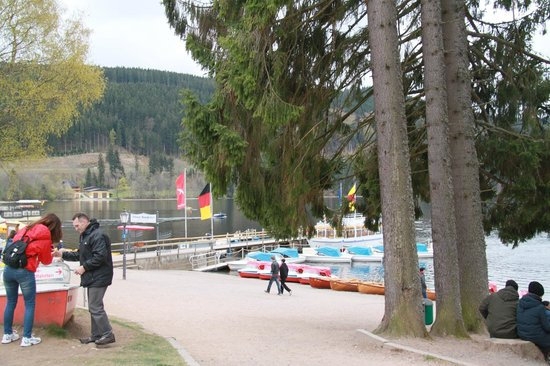 Titisee: View