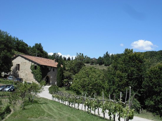 Agriturismo La Costa - Cascina Scarpata : Esterno