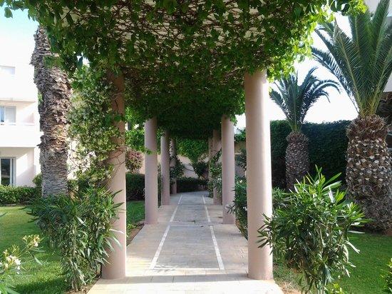 Lyttos Beach Hotel : Garden view