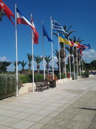 Lyttos Beach Hotel : Flags