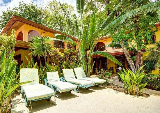 Nosara Beach House: Pool area