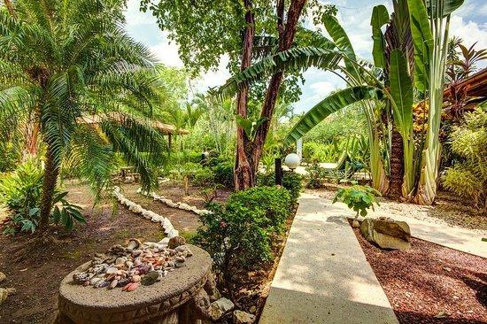 Nosara Beach House: Garden