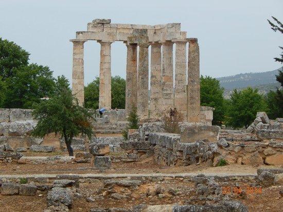 Temple of Zeus - Picture of Ancient Nemea, Nemea - TripAdvisor