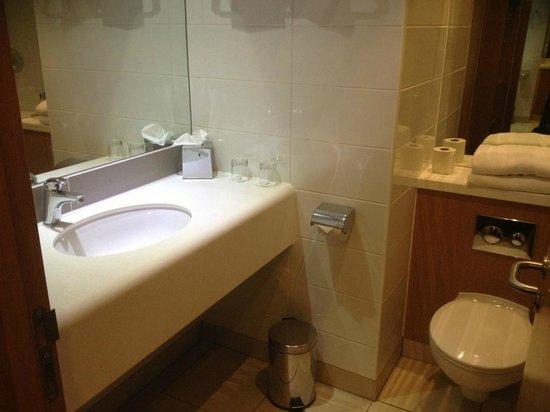 Louis Fitzgerald Hotel: Bathroom