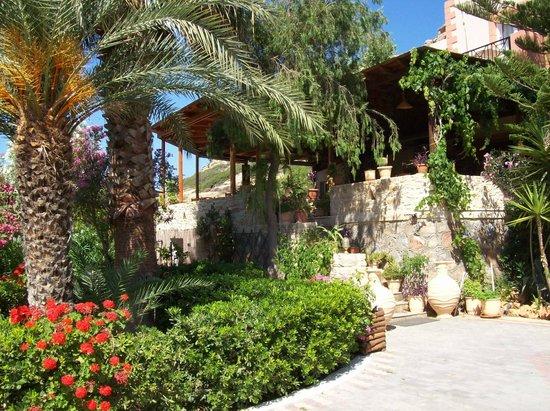 Hotel Calypso Matala: hotel Calypso
