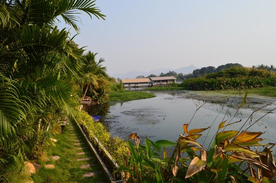 Ploy Guest House : view from deck