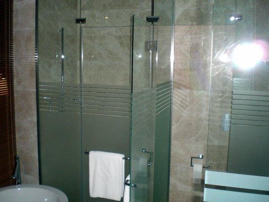 Bilgah Beach Hotel : Shower and WC