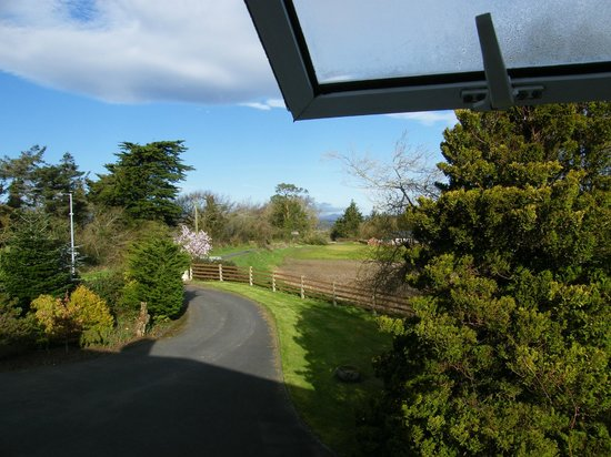 Moneylands Farm: view from one of the windows in the room