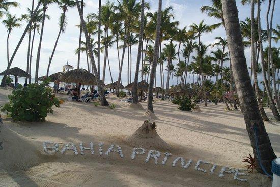 Grand Bahia Principe La Romana : Beach