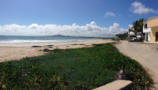 The beach by Iguana Crossing
