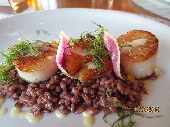 Belmond El Encanto: Beautiful presentation of meals