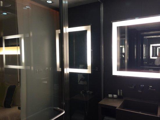 Novotel Buenos Aires : Banheiro moderno