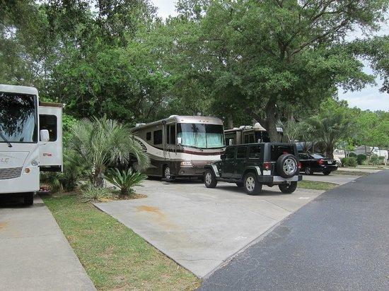Hilton Head Harbor RV Resort and Marina: Example RV Site