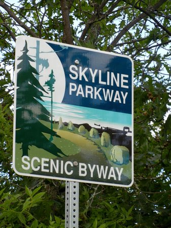 Skyline Parkway: Don't expect to see many of these!