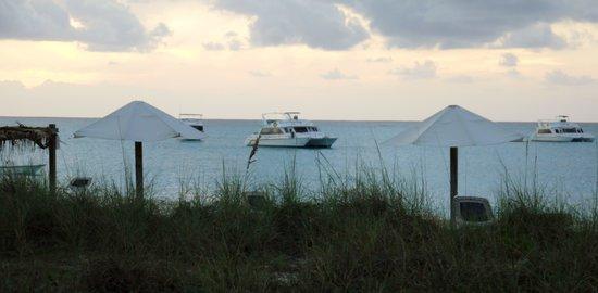 Club Med Columbus Isle: Beach