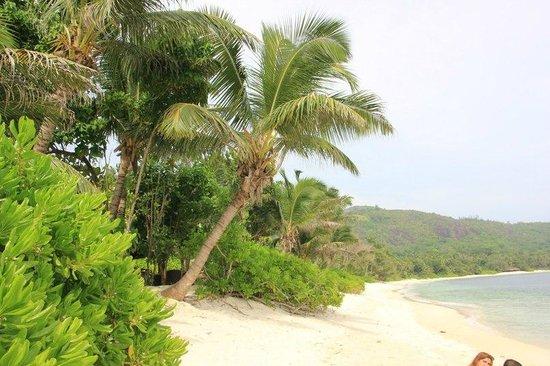 Kempinski Seychelles Resort: Пляж