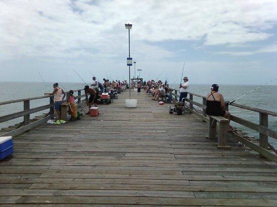 Kure Beach Pier: lots of fishermen out!