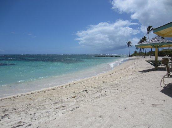 Nisbet Plantation Beach Club : Beach