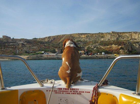 Joyride Watersports : Lucky on board!