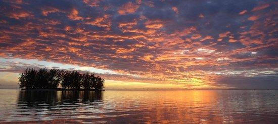 Moorea Fare Miti : Sunset