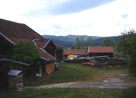 Landhotel Postwirt: view